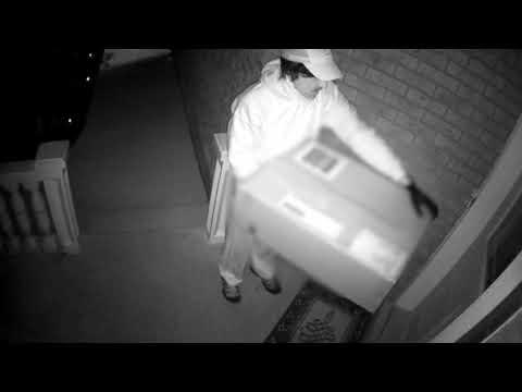 كاميرا مراقبة تُسجل محاولة قتل سيدة بأسلوب غير مسبوق في كندا